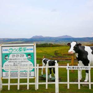 雄大な風景 900草原(きゅうまるまるそうげん)