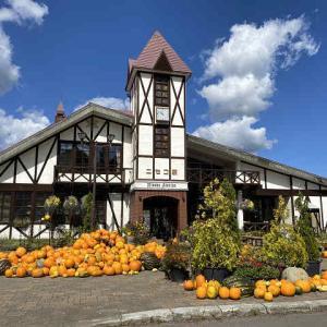 かぼちゃがいっぱいの ニセコ駅