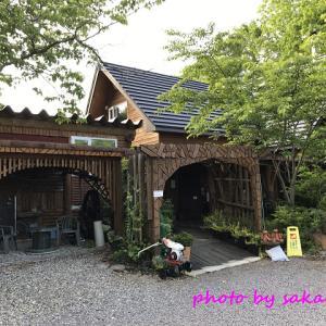 駒ケ岳茶房のソフトクリーム