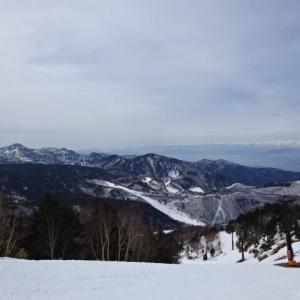 志賀高原情報、雪、積もりました!