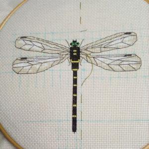 昆虫 その1