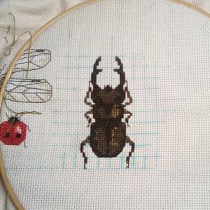 昆虫 その3