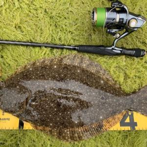 どうすれば瀬戸内のヒラメは釣れる?データを元に地合を攻略