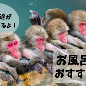 【お風呂の絵本おすすめ8選】動物たちと一緒にお風呂嫌いを解消しよう!