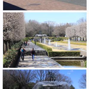 昭和記念公園でお散歩オフ会②