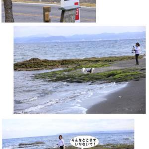 千葉旅行 宿 目の前の海と潮風大国