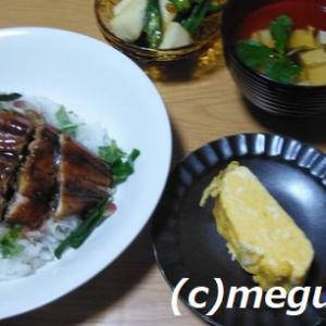 鰻のひつまぶしの定食風の夕食