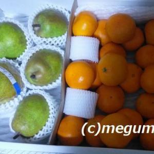 頂きものの果物&カワ(・∀・)イイ!!ムギの写真