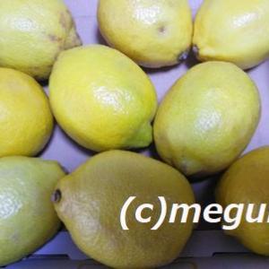 メルカリで買ってみたレモン