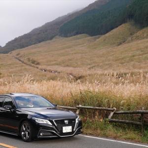 備忘録2020-11/2箱根仙石原歩き