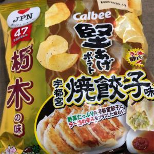 これは超餃子!マジ餃子! カルビー 堅あげポテト 宇都宮焼き餃子味