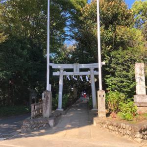 最近あんまりいいことないので神社に行ってきた 高尾氷川神社