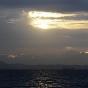 剣崎南沖はカツオ・マグロの檄反応がいっぱい。まだまだ終わりませんよ。