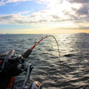 釣りを3ヶ月以上ご無沙汰するとどうなる? と、ワラサの準備。