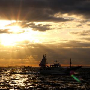 【ワラサ開幕】異例の遅延スタートとなった剣崎沖ワラサ釣りに行ってきましたよ。