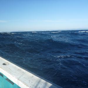 中深海 第38弾 38打数8安打 新規開拓で
