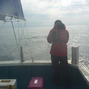 中深海第45弾 アラ キターーーのは隣