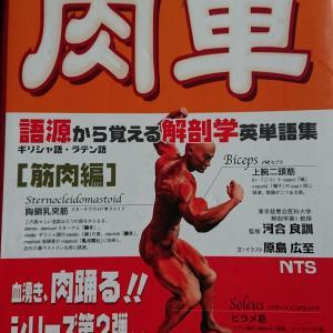 【医学参考書】肉単(ニクタン)~語源から覚える解剖学英単語集~【感想・レビュー】