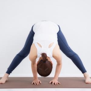 股関節の解剖と機能について