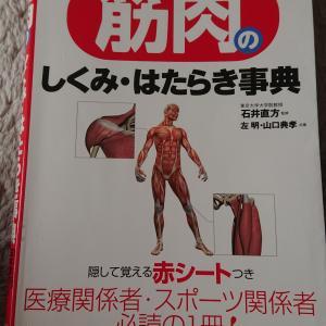 【医学参考書】筋肉のしくみ・はたらき事典【書評・レビュー】