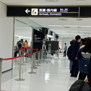 無事日本へ。30日の検疫の様子。