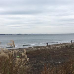 渥美半島 西の浜情報