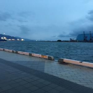 清水港フェリー乗り場釣行