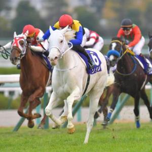 【オークス】【de】【競馬】須貝調教師「ソダシはオークス向きだとずっと思っていました」
