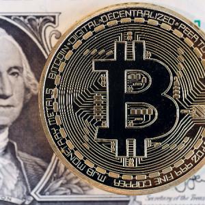 【インサイダー】【de】【仮想通貨】マスク氏ツイートでビットコイン急騰、テスラの受け入れ再開を示唆