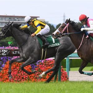 【マーメイド】【de】【競馬】シャムロックヒル、謎の10番人気が来る!!?に応える