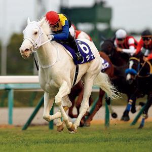 【種牡馬】【de】【競馬】白毛が種牡馬になったら日本の競馬界は白毛だらけになるの???