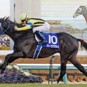 【種牡馬】【de】【競馬】ハーツクライ種牡馬引退、リスグラシューなど輩出