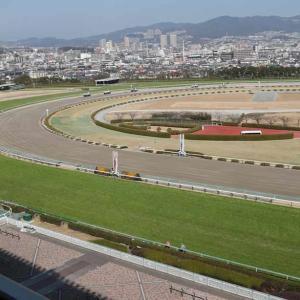 【台風】【de】【競馬】土曜日の中京競馬が中止の可能性