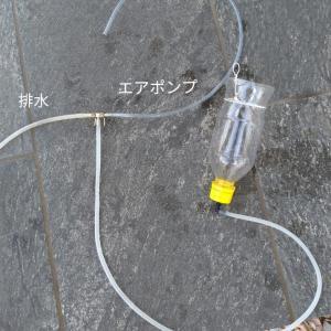 ブラインシュリンプ孵化&分離器