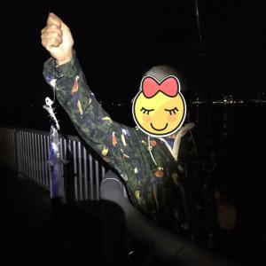 神戸湾 タチウオ、ハマチ