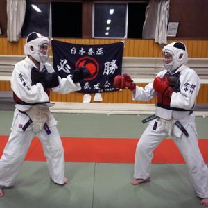 日本拳法面用マスク ! マウスガード(少年用)実戦配備