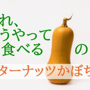 「バターナッツかぼちゃ」ってどんな味?【栄養成分と食べ方を紹介】