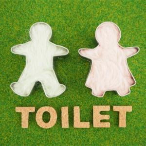 トイレ掃除は簡単に!トイレブラシはないけど綺麗です。