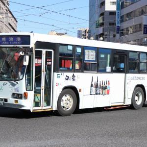 鹿児島交通 795
