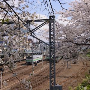 駅 … 新たな出発 [ 花咲く小樽で ]