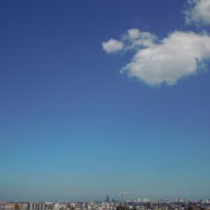 さらば〝 夏 〟よ…。【 夏の札幌 】
