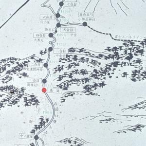 富士登山競争試走会(夫)のお付き合い