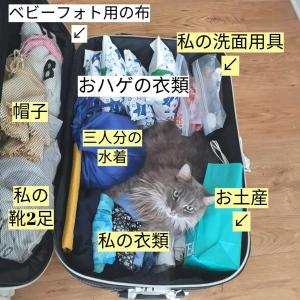 何がいる?いらない?赤ちゃん連れスーツケースの中身