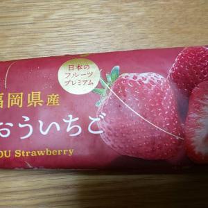 【Uchi Cafe】日本のフルーツプレミアム 福岡県産あまおういちご