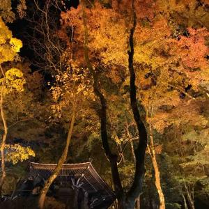 香嵐渓にて紅葉散策