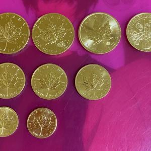 【金貨※】現在、9枚の金貨があります⭐️
