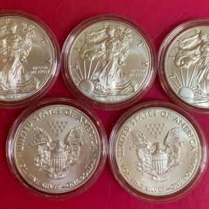 【楽天市場にて※】イーグル銀貨(1オンス※)5枚セット、届きました⭐️