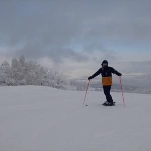 スキーブーツの最期