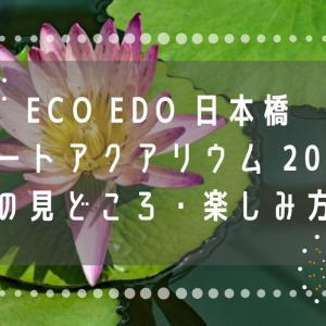 ECO EDO 日本橋 アートアクアリウム 2019 の見どころ・楽しみ方