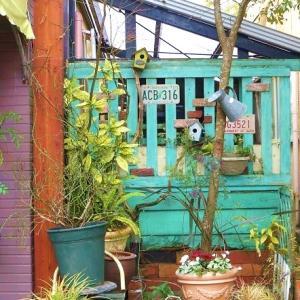 木を植え込んで完成。お店の横の庭。